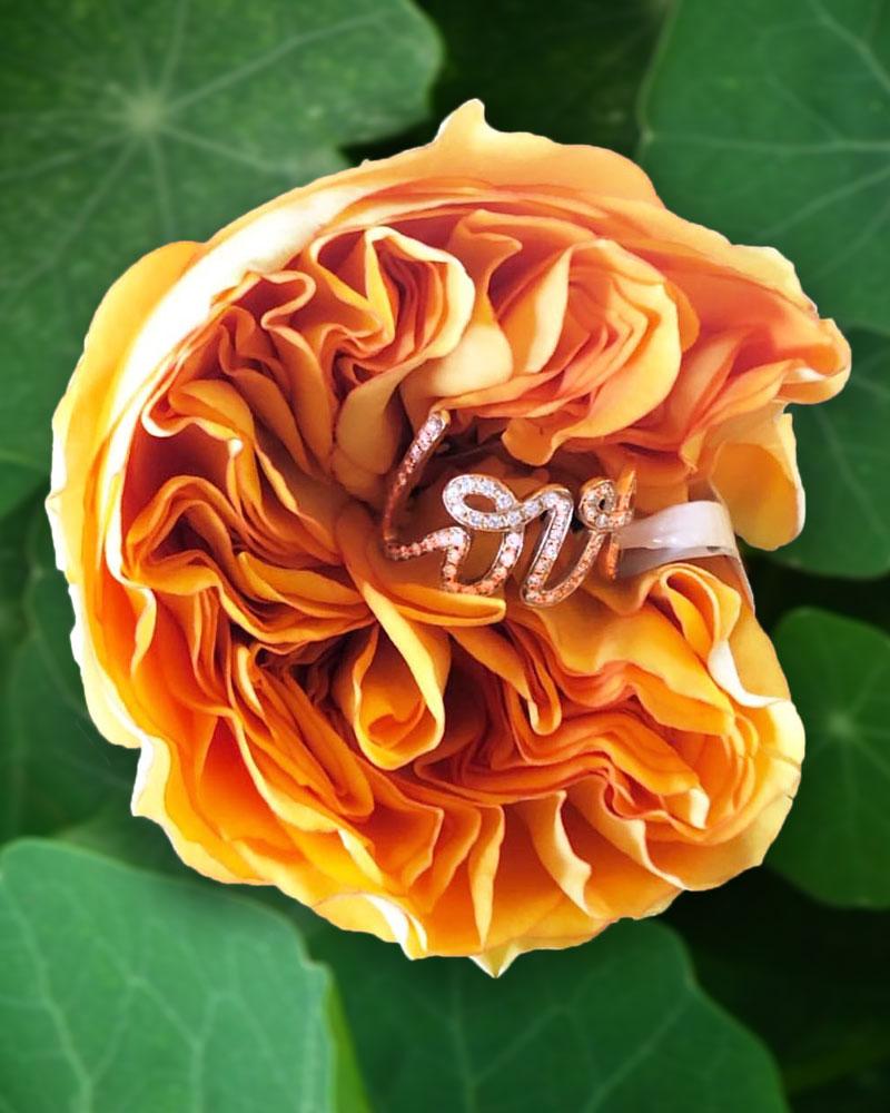 Shannakian Love Ring in flower